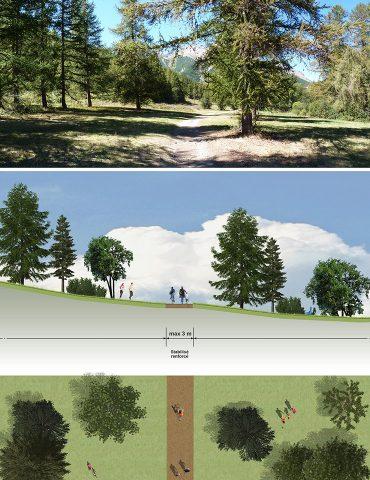 Exemple d'aménagement en prairie boisée
